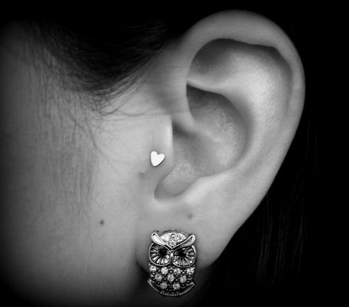 gorgeous tregus, and lobe piercing love it! Both of them!!