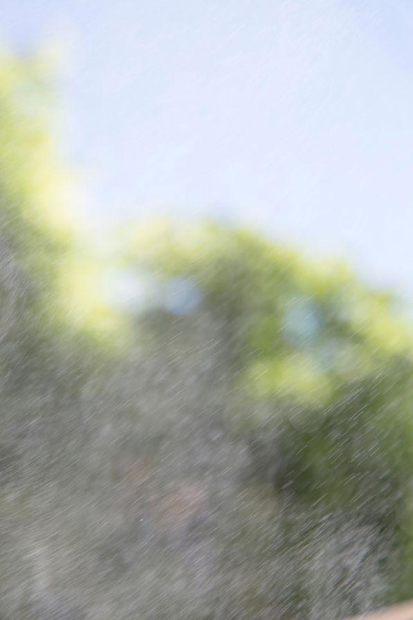 川内倫子×テリ・ワイフェンバック 「Gift」展(川内倫子 Terri Weifenbach)   IMA CONCEPT STORE   IMA ONLINE