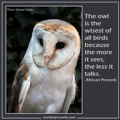 World of Proverbs - Famous Quotes: The owl is the wisest of all birds because the more it sees, the less it talks. ~ African Proverb [18896]...