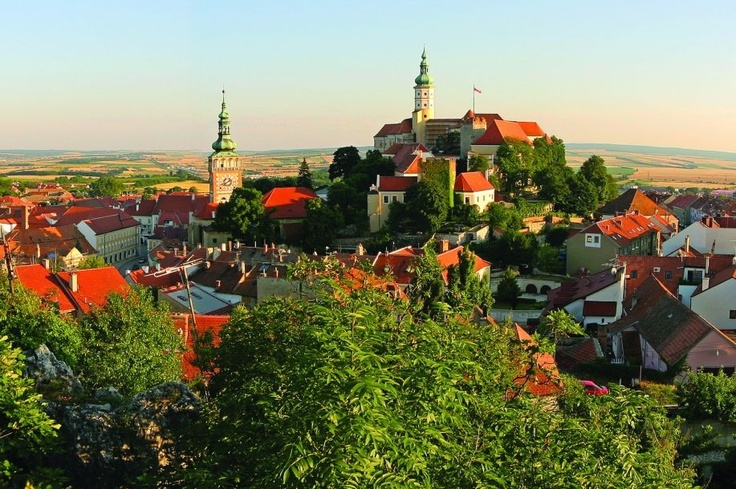 Mikulov, Czech Republic. I remember something about a wine cellar here.