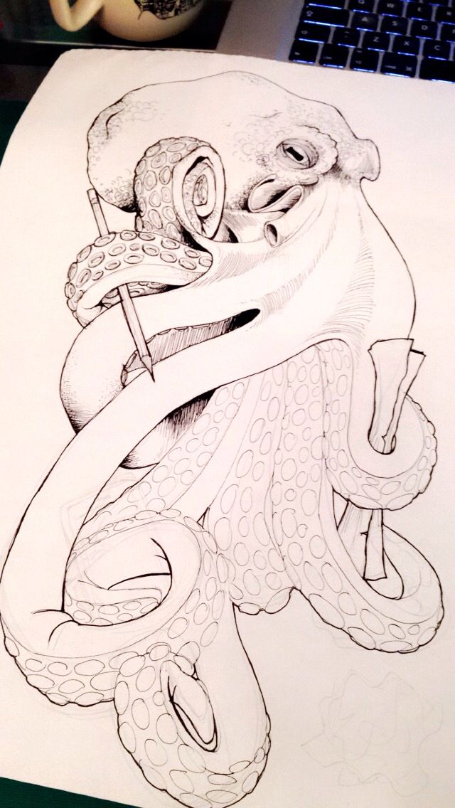 Octopus drawing                                                       …                                                                                                                                                                                 Más