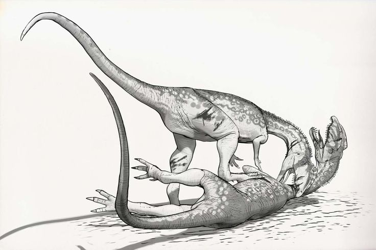 Draw Dinovember Day 23 Dilophosaurus, Raul Ramos on ArtStation at https://www.artstation.com/artwork/WdwVy
