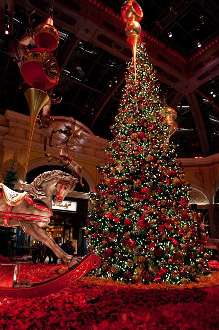 Christmas Photos In Las Vegas at the Bellagio | Vegas Photography Blog