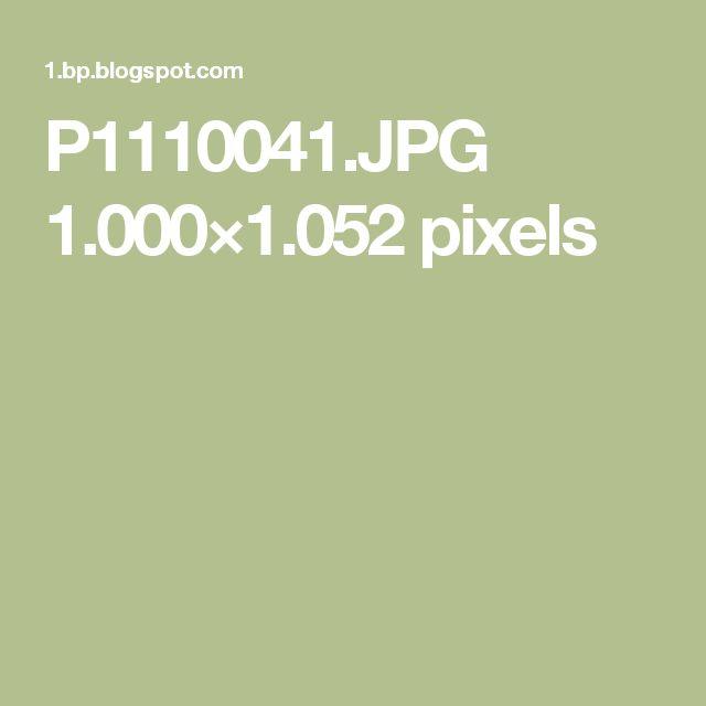 P1110041.JPG 1.000×1.052 pixels