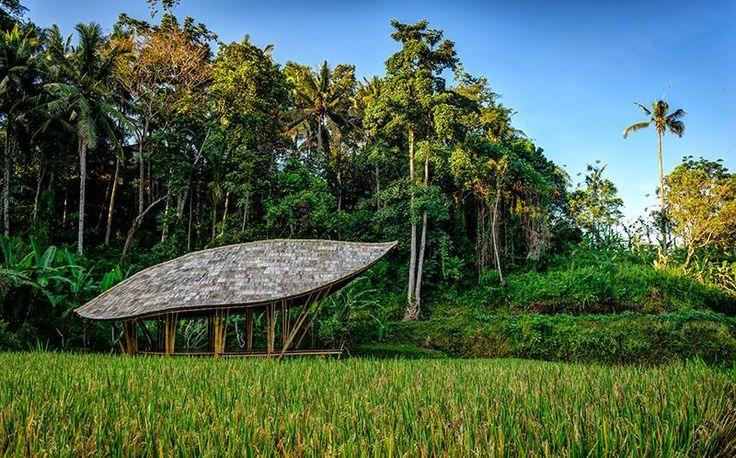 Four Seasons Resort Bali at Sayan baru saja merilis balai yoga dinamai Dharma Shanti Yoga Bale. Desainnya terinspirasi bunga teratai. Bale ini menawarkan beragam kelas yoga.
