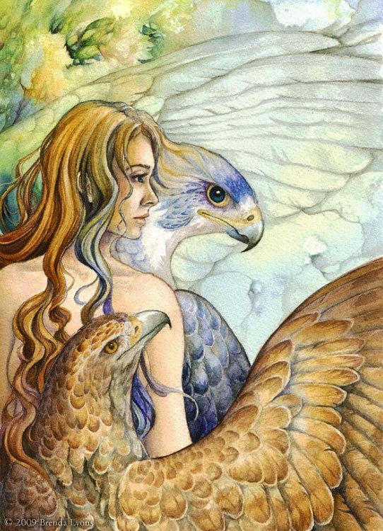 Falcon With Blue Eyes by Brenda Lyons