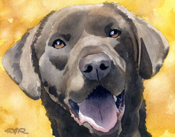 CHOCOLATE LAB Dog Art Print Signed by Artist DJ Rogers