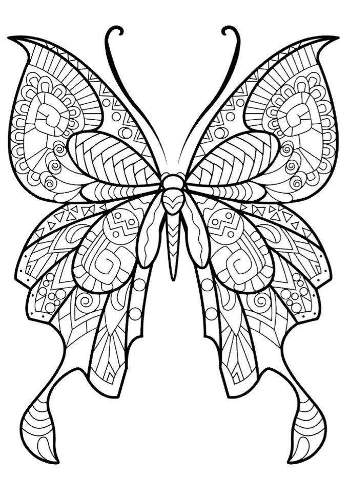51 beautiful butterfly picturesbeautiful butterfliescoloring pages - Coloring Pages Butterfly