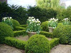 modern parterre garden - Google Search