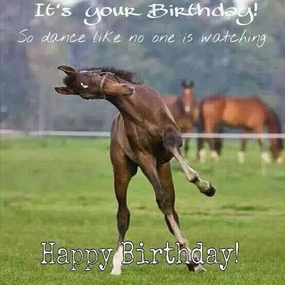 Horse Saying Happy Birthday