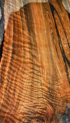 24 Best Images About Exotic Wood Columbus Ohio On