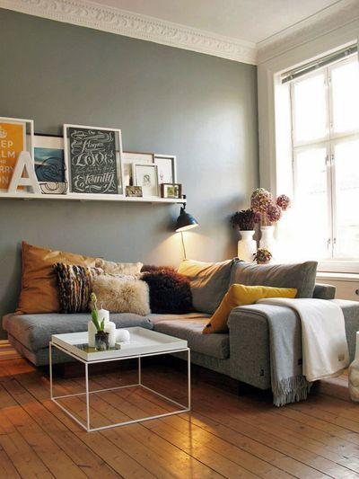 petit salon contemporain chaleureux gris cocooning