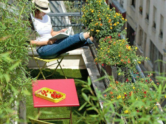 The 25+ Best Ideas About Winterharte Balkonpflanzen On Pinterest ... Winterharte Balkonpflanzen Pflanzarten Und Pflege Tipps