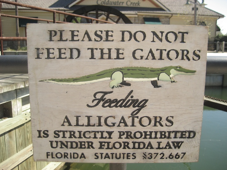 The Villages, Florida, this sign is in several places around the Villages, anywhere alligators might swim or sun themselves.
