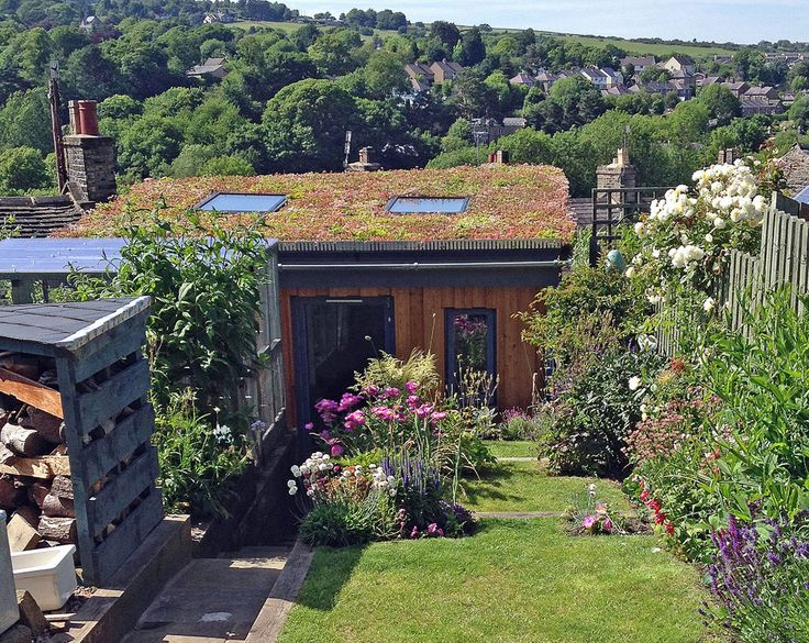 Artist studio nestles into this small but perfectly formed Derbyshire garden. The Sedum roof helps it to blend in to the garden perfectly.