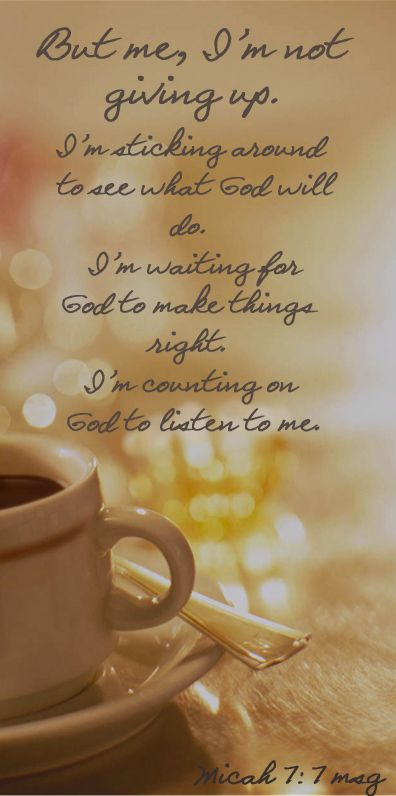 Micah 7:7 King James Version (KJV)7 Therefore I will look unto the Lord; I will WAIT for the God of my salvation: my God will hear me.