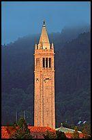 Campanile, Калифорнийский университет в Беркли кампуса.  Беркли, Калифорния, США…
