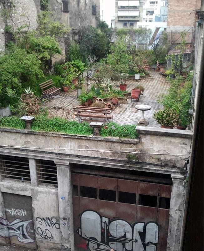 Is it a surprise as it is found in an unusual place, such as this beautiful rooftop?