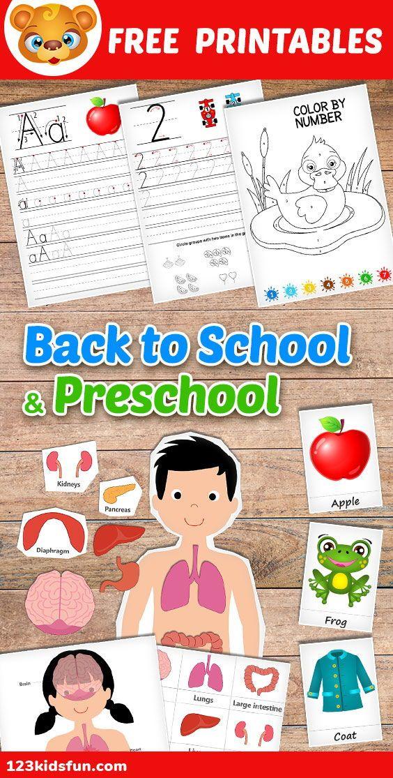 Homeschooling – School & Preschool Worksheets