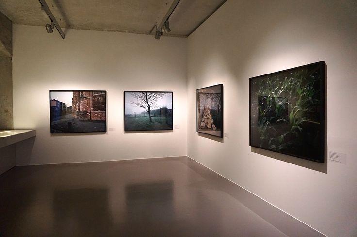 "Chloe Dewe Mathews #Exposición ""Shot at Dawn"" Ivorypress #Madrid #Madrid #Fotogafía #Photography #PHE16 #PHOTOESPAÑA #Arterecord 2016 https://twitter.com/arterecord"