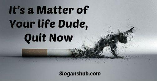 Pin on Anti Smoking Slogans