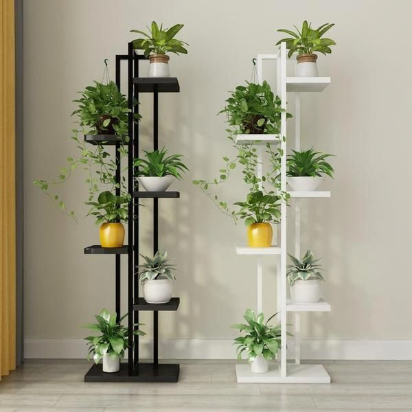 Plantas de interior grandes for Decoracion con plantas en living