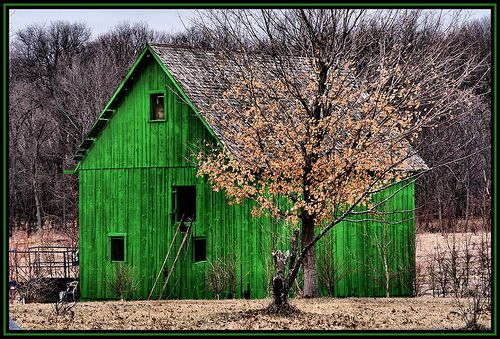 """A Little Green Barn...all I can think of is ...""""is it red?...no...then it's not a barn!"""""""