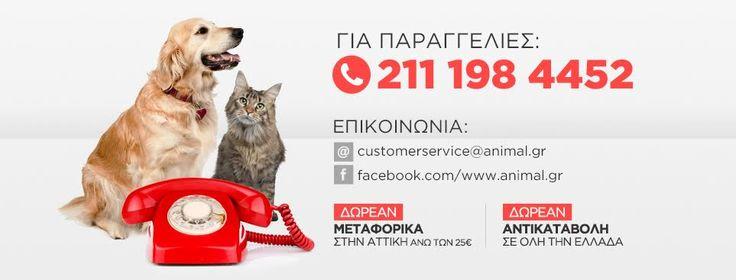 Animal.gr: Το πιο φθηνό και αξιόπιστο online pet shop. Δωρεάν μεταφορικά για αγορές άνω των 50 ευρώ στην Αθήνα.