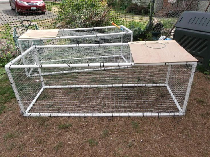 51 best images about bunnie on pinterest rabbit cages for Pvc chicken tractor plans