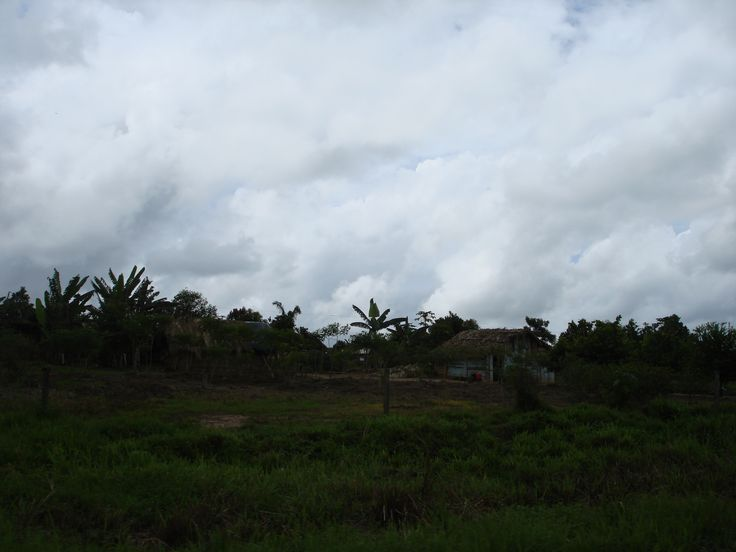 Casebre no meio da estrada no Pará