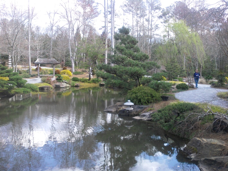 8 best Ponds images on Pinterest | Ponds, Water feature ...