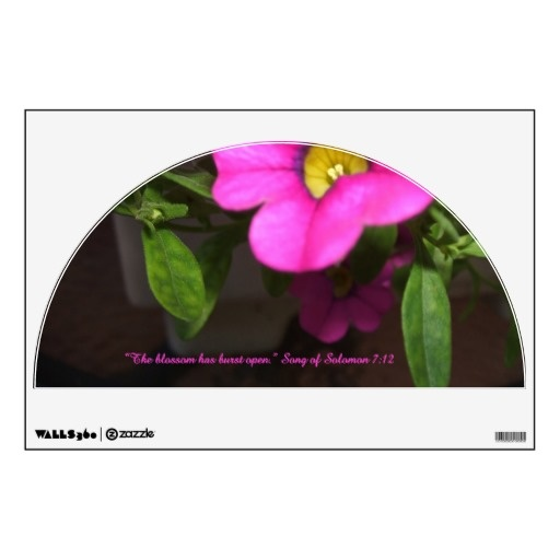 the Song of Solomon quotation.