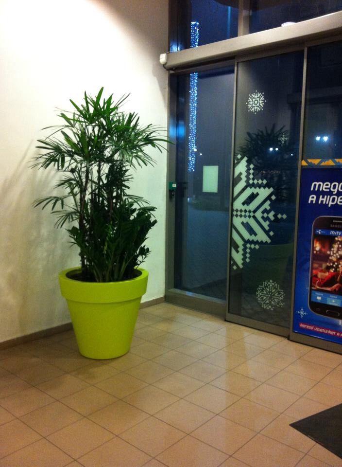 www.zoldlevego.hu Pólus bevásárlóközpont növénydekoráció referencia.