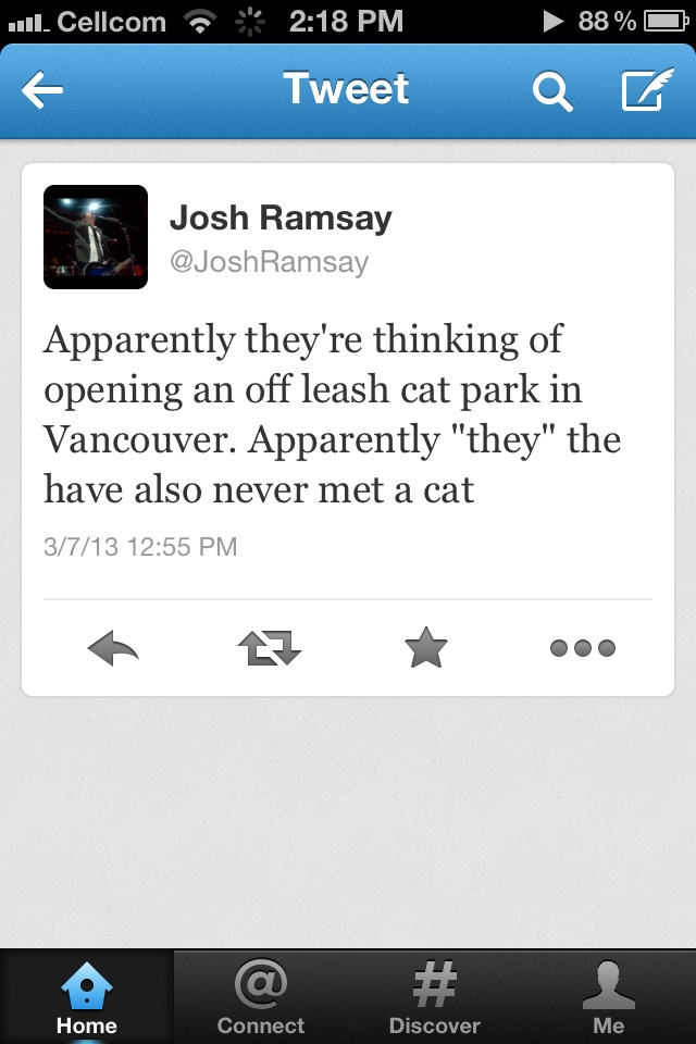 Josh Ramsay on cats