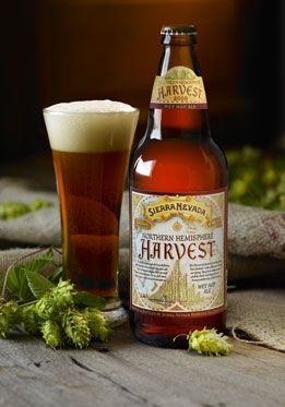 Best 25 ale hop ideas only on pinterest craft beer near for Best craft beer club