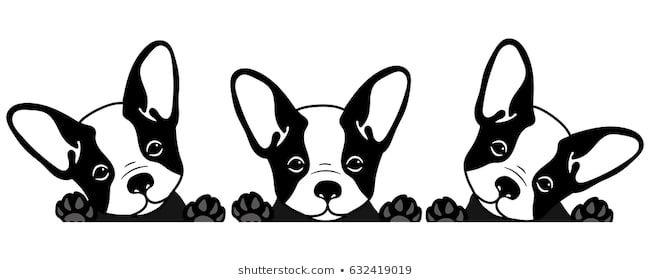 Imagenes Fotos De Stock Y Vectores Sobre French Bulldog Free Black And White Picture Of A Dog Download Free In 2020 Cute Funny Cartoons Bulldog Cartoon Puppy Cartoon
