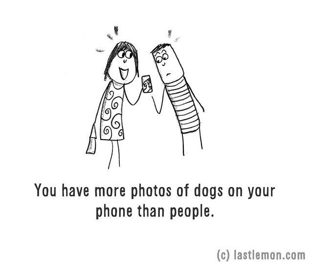 A telefonod a kutyád fotóival van tele, igaz?