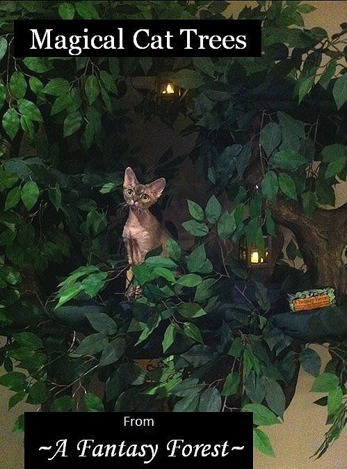 Magical Cat Trees from ~A Fantasy Forest~