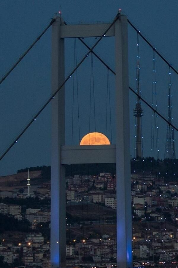 moon...good night, baby.