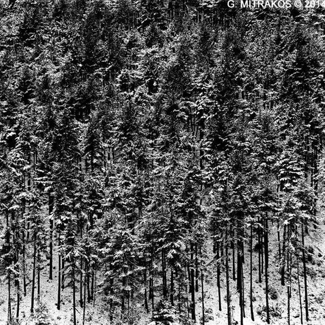 Γρηγόρης Μητράκος, Black & White Analogue Photography | Της Μιμής Δράκου | The Machine.gr
