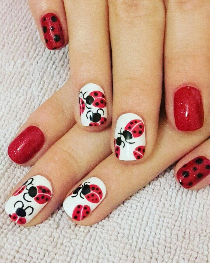 Hand painted ladybird shellac nails