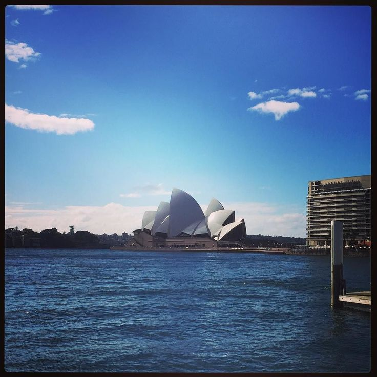 The walk to the train station this morning ... magic #sydney #operahouse #australia #kiwiroamer #wanderlust #travel #kiwi #nz #aotearoagirl #lovetotravel #wheretonext #culture #history #curiosity #oneplanet #ourworld #travelling #kiwigirl #explore #exploring