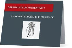 My Certificate of Authenticity