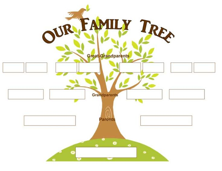 12 Best Images About Family Tree On Pinterest