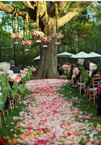 Casamento no Campo! Muito Lindo!!!