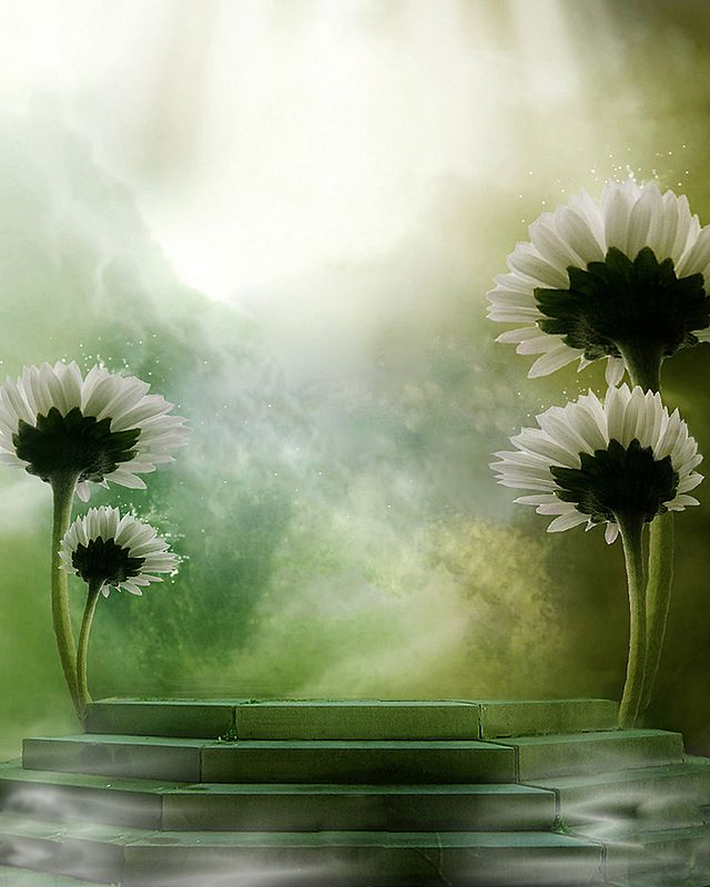 Best 25+ Romantic Backgrounds Ideas On Pinterest