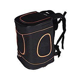 Best Dog Backpack Carrier For Hiking, Biking & Walking