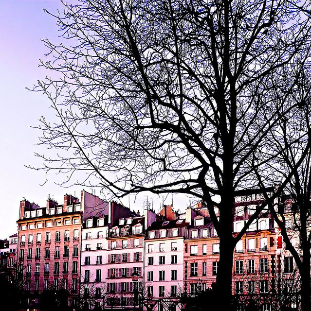 the hidden and ultra romantic place dauphine. (paris)