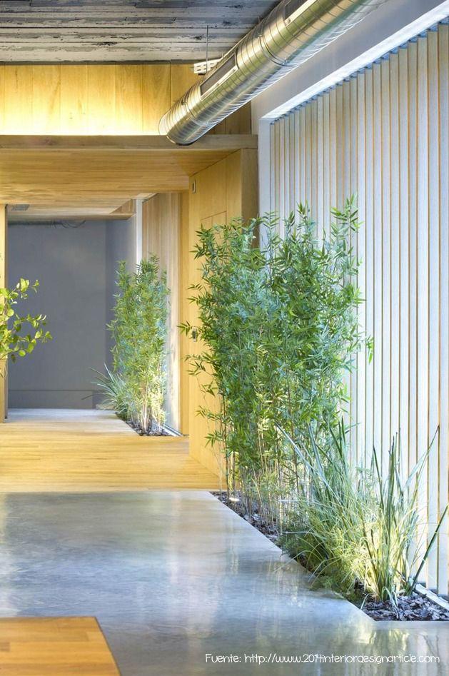 Solo plantas para este recibidor minimalista.