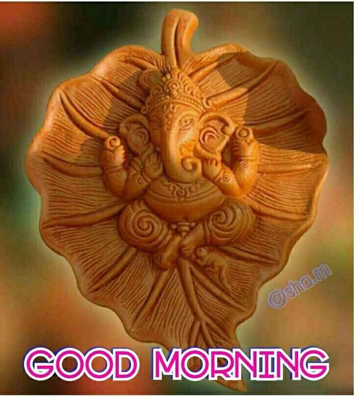 @ Sha . M GOOD MORNING